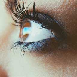 freetoedit pcthroughmylense myphotography myeyes eye
