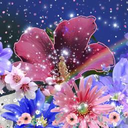 freetoedit myedit flowers flowerphotography summervibin