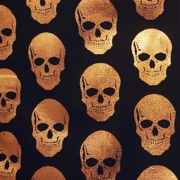freetoedit gold skulls skull black