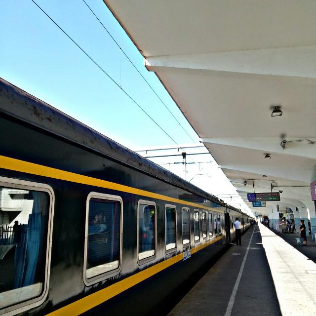 green train #freetoedit