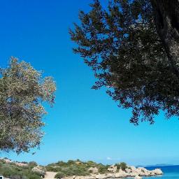 summer holiday sea