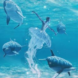 freetoedit echumananimalhybrid humananimalhybrid jellyfish dolphins