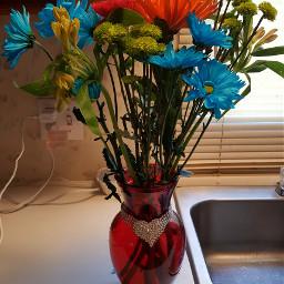 flowers blue helovesmehelovesmenot