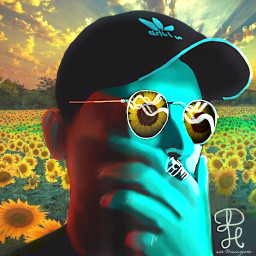 complimentarycolors blueandyellow pictureoverlay sunflowers vipshoutout freetoedit