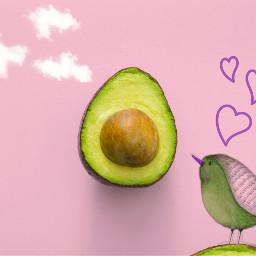 freetoedit avocado ircavocadoday avocadoday