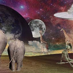 myart myedit background elephants giraffes