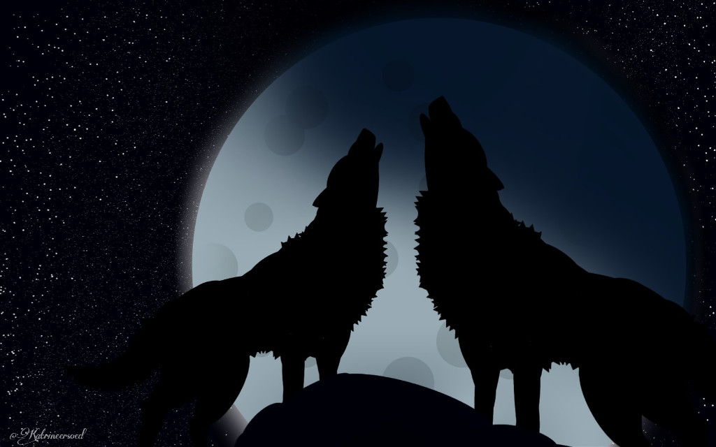 So apparently, the black in the photo makes this drawing questionable. Idk why \_(^-^)_/ I still prefer this one over the other, so here it is. Edit: Loool it's back in the challenge. YAY!  #freetoedit #moon #wolves #remixit #wolf #night #dclifeonthemoon