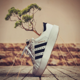 freetoedit sneakers zapatillas surreal editedwithpicsart