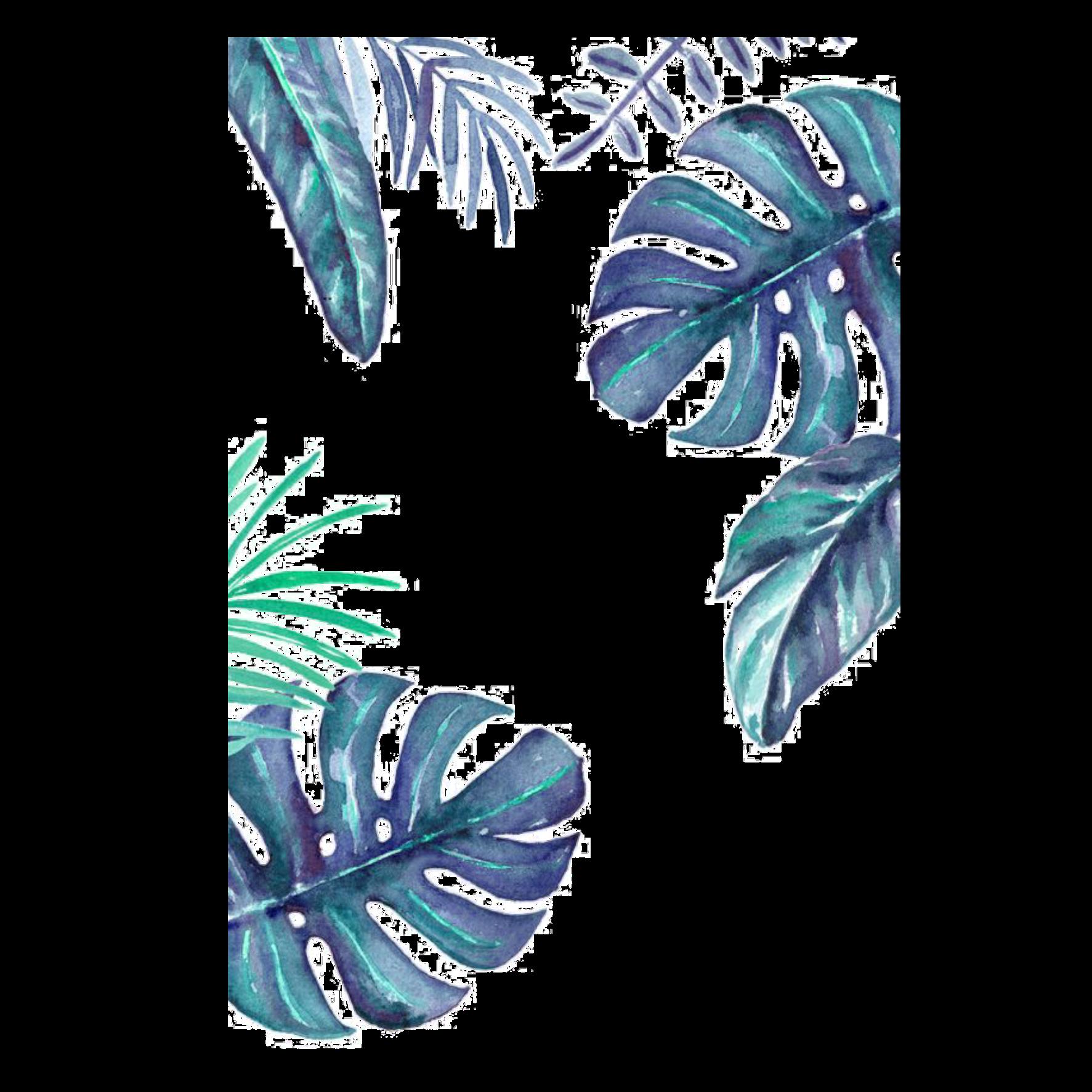 рисунок зеленые листья на белом фоне удача