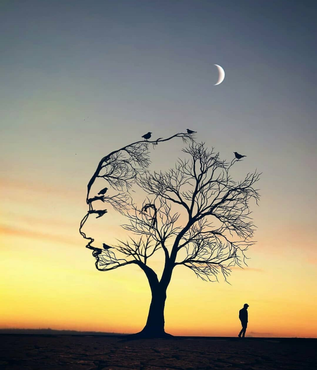#freetoedit #girl #paradise #tree #birds #beautiful #art (not mine)