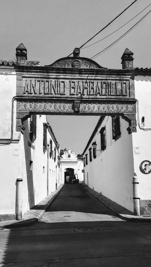 #streetphotography #blackandwhite #shadows #winehouse #andalucia
