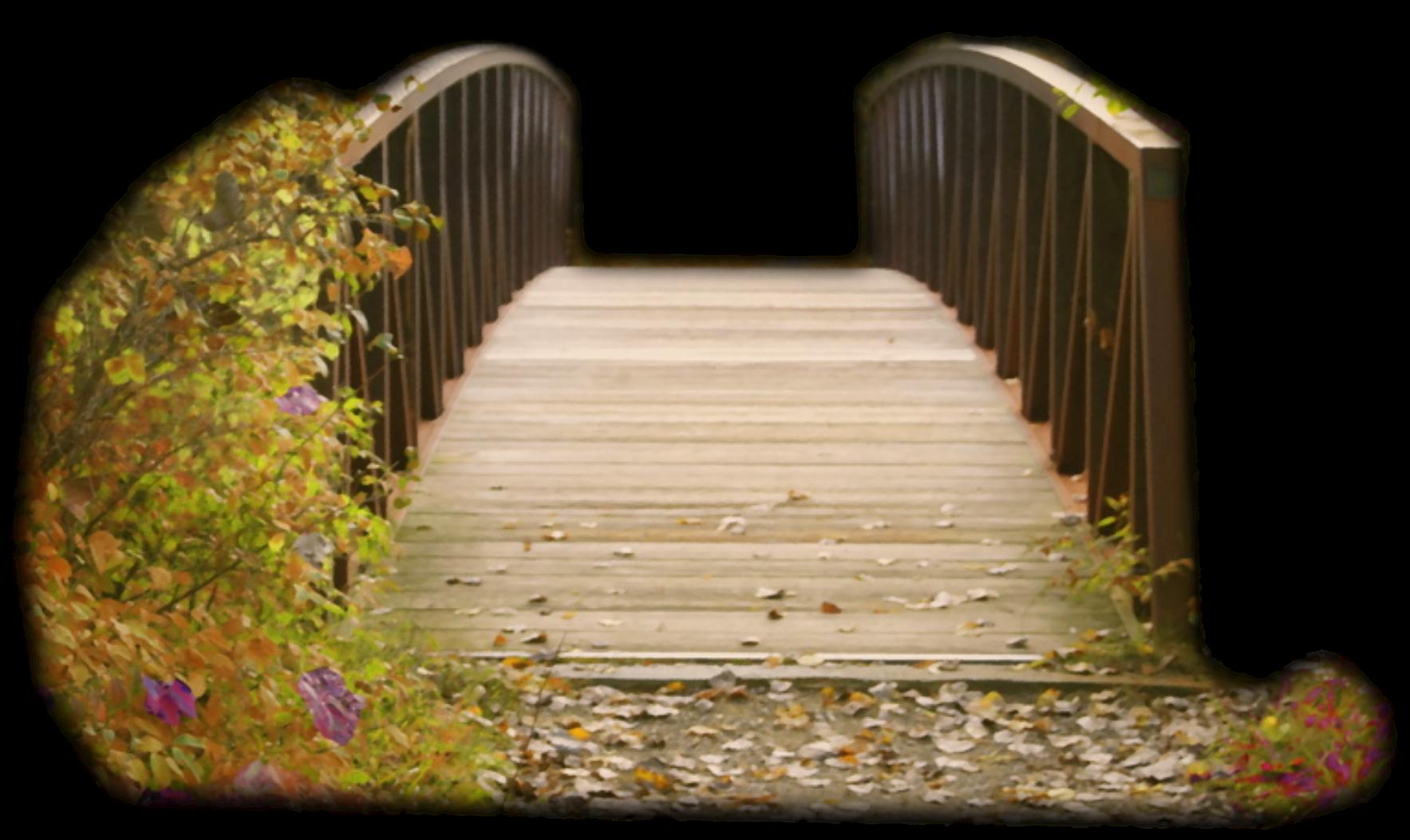 Картинка мост анимация, изображения