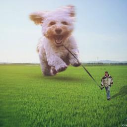 freetoedit dog mascot surrealism imagination