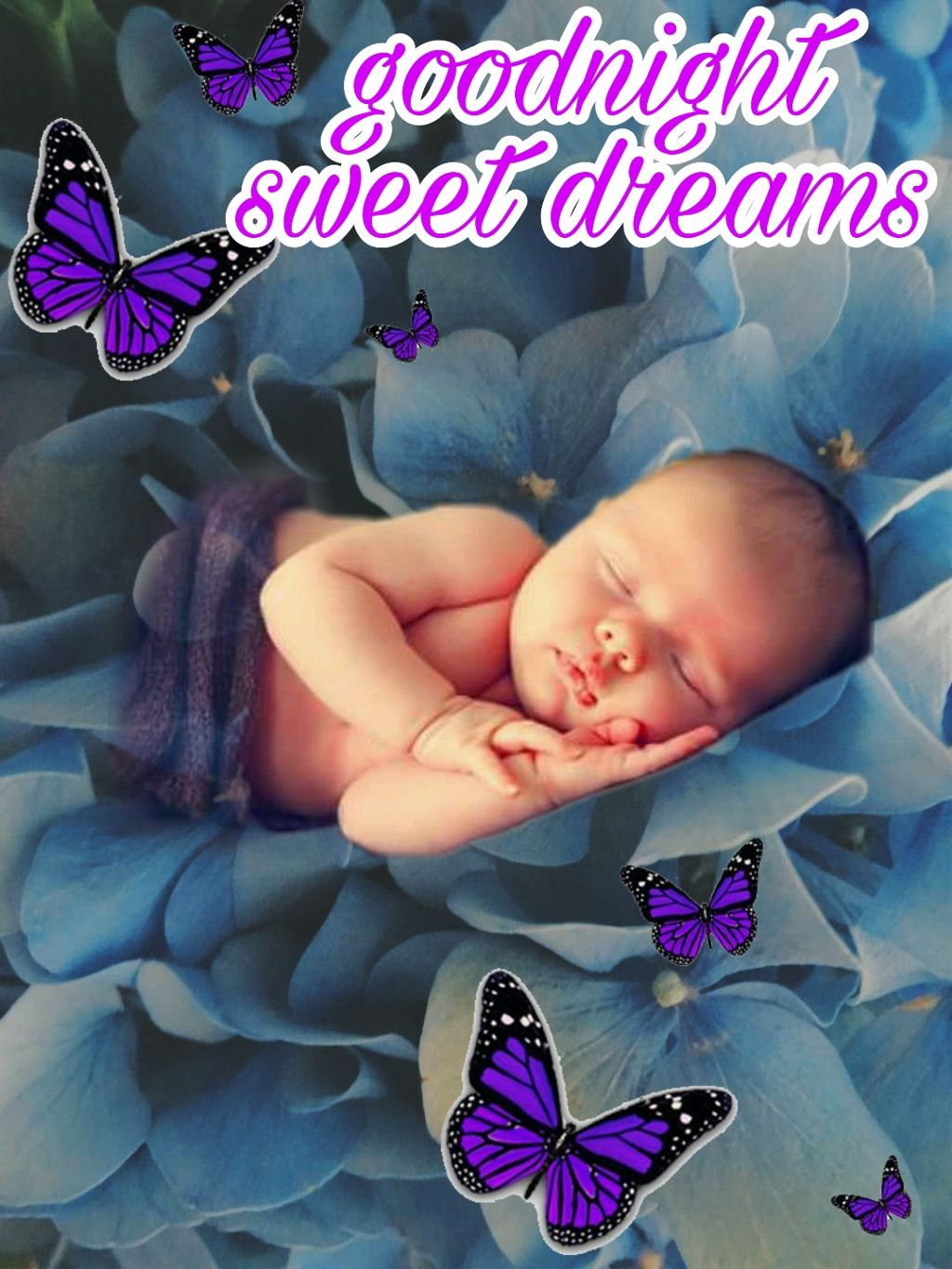 Baby Goodnight Cute Butterfly