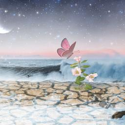 freetoedit ircbeachsunset beachsunset floralwrap awesome