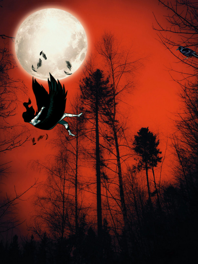 Falling Angel. Background pic from @silviaammann  #freetoedit #vipshoutout #duotone #mvfltr #fallingangel