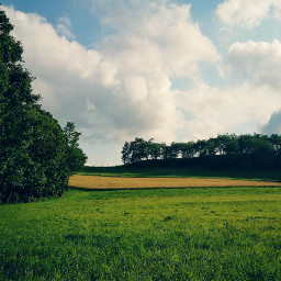 freetoedit field trees sky clouds
