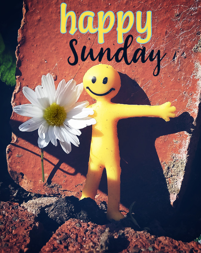 Have a Happy Sunday my fellow Picsartist's #daisy #flower #flowerpower #funedit #stickers #toy #dodgereffect #freetoedit