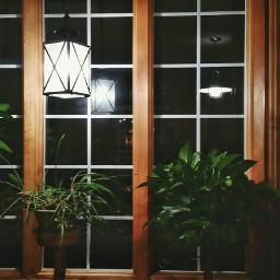 pccozycorner cozycorner houseplants window lightingequipment freetoedit