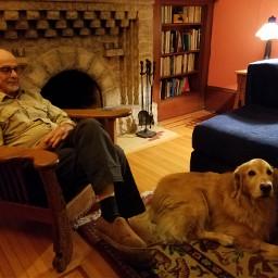 cozy fireplace craftsman golden dog pccozycorner