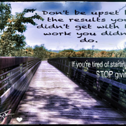 freetoedit relax hikingtrail bridge forestgreen