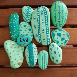 piedraspintadas piedrasdeespa cactus cactuslover verde