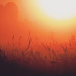 freetoedit sunrise_sunsets_aroundworld photography naturephotography nature