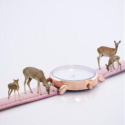 freetoedit remixed deer watchout