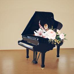 freetoedit piano
