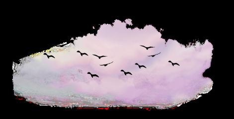 bmrs birds freetoedit