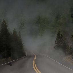 freetoedit foggy deserted road street
