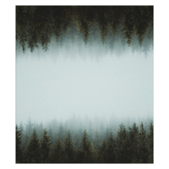 freetoedit forest trees ftestickers