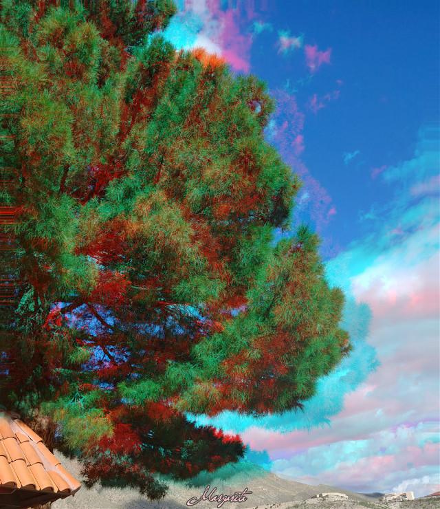 El cielo lo descubri en sus bellas alas.  #myphotography #sky #clouds #mylife #tree #septembermorning #beautifullife #mondaymorning #glitcheffect #dreamy #emotions #naturelover #myhome