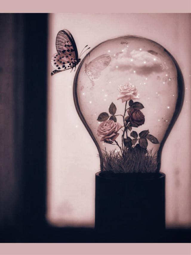 Good morning🌞 Original image from @sur_vol for weekely #vipshoutout  #photomanipulation #lightbulb #stickers #newbrushes #editstepbystep #pink #myedit