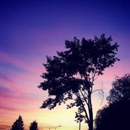 freetoedit pcnaturephotography naturephotography sunset colourfulsky