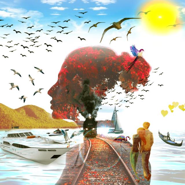 #freetoedit #sea #train #september2018 #bird