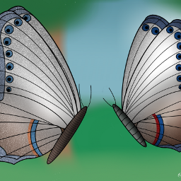 freetoedit butterfly ugly mydrawing nature dcbutterflies