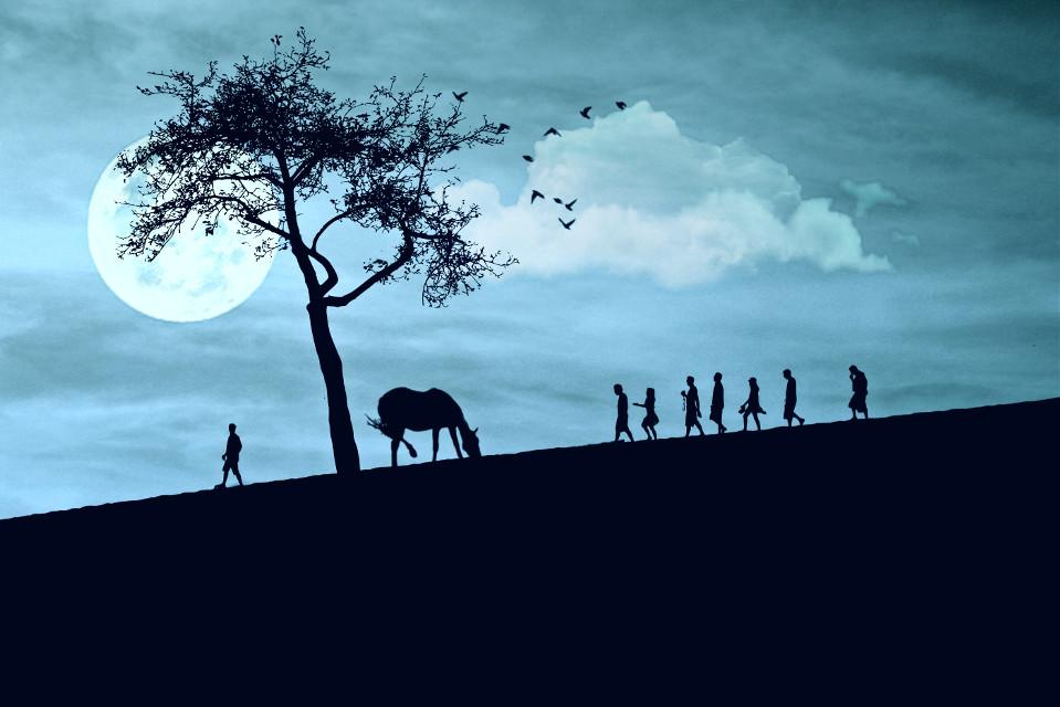 #freetoedit #silhouette #hueeffect #myedit