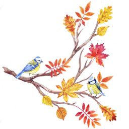 freetoedit mydrawing mypainting dcautumnleaves autumnleaves dcautumn