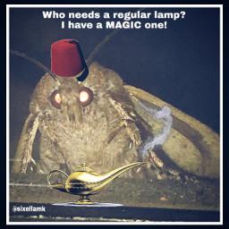 mothmeme freetoedit