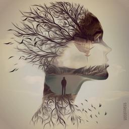 freetoedit doubelexposure silhouette branches birds