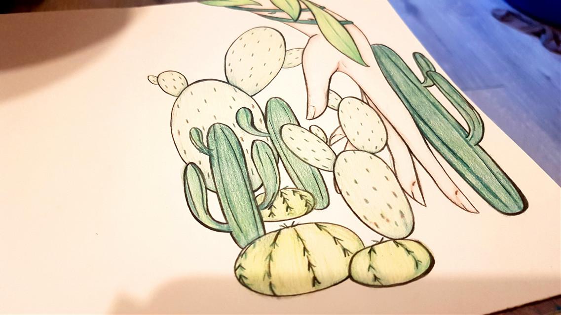 #drawing #cactus #plant  #freetoedit