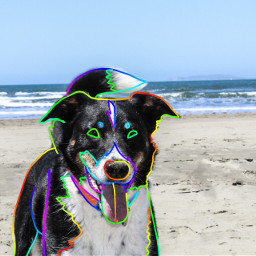 rainbowbrush outline dogs   has freetoedit dogs