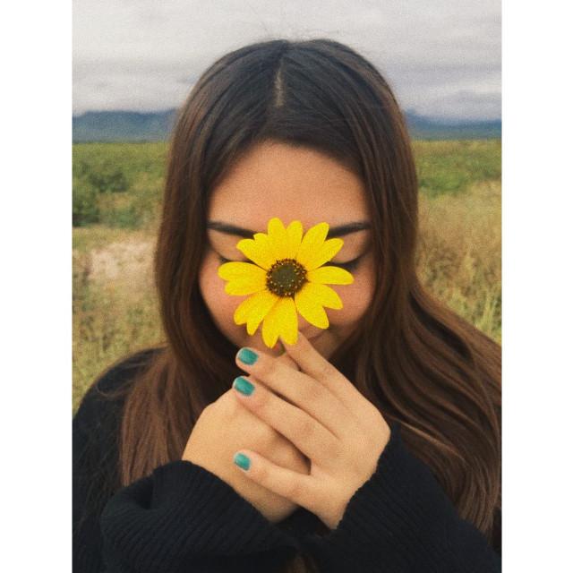 #freetoedit #sunflower #girasol #yellow #flor #yellowflower #omg #black #negro #lindo #mexico #mexican #cute