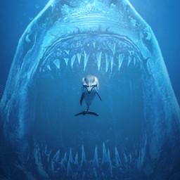 freetoedit sea shark dolphin ocean