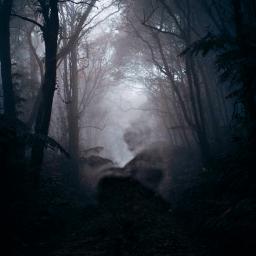 freetoedit dark thedarkside forest ircintothehauntedforest