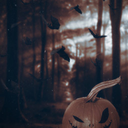 irctheperfectpumpkin perfectpumpkin photomanipulation halloween spookify