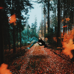 freetoedit falling man forest autumn