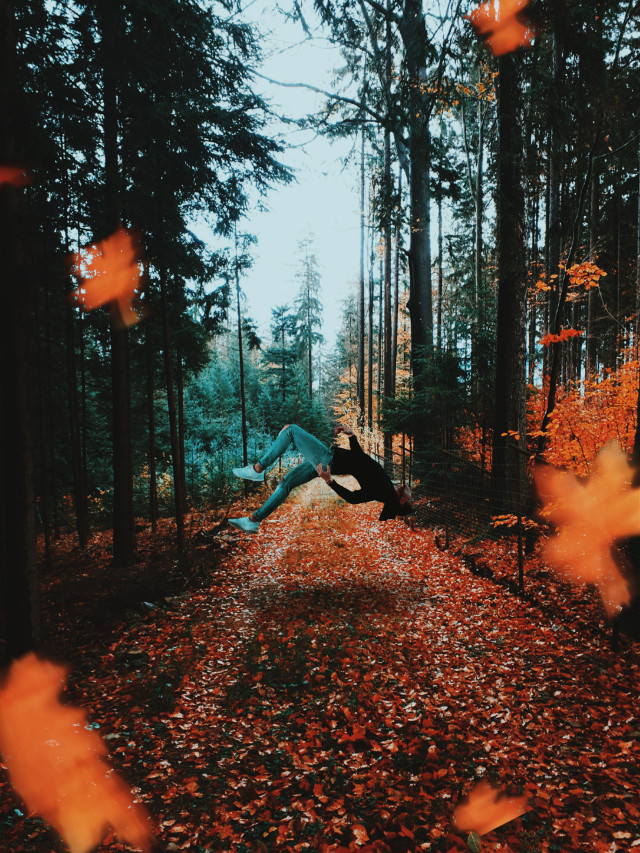#freetoedit #falling #man #forest #autumn @picsart