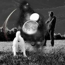 freetoedit americanakita dog hund bw schwarzweissfotografie